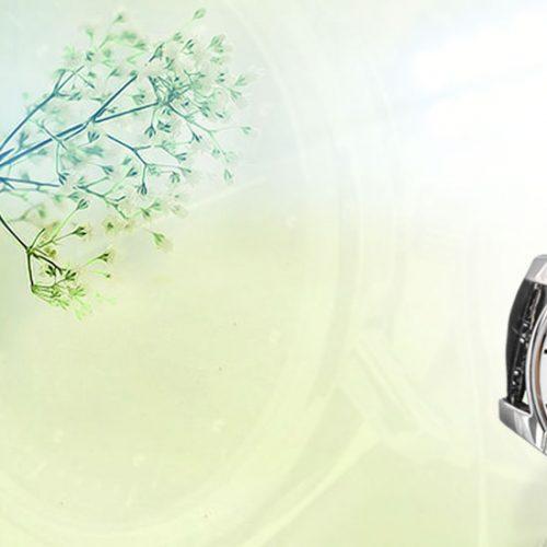 Watches / Clocks